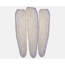 Doğal Kabak Lifi 40 cm