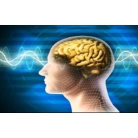 Beyni Çürüten Flörürün Panzehiri Zerdeçal
