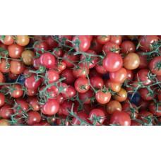 Çeri Domates (İTU) 500 gr - Cherry Tomato